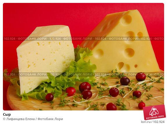 Сыр, фото № 102924, снято 27 октября 2016 г. (c) Лифанцева Елена / Фотобанк Лори