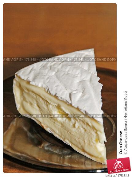 Сыр Cheese, фото № 175548, снято 13 января 2008 г. (c) Лифанцева Елена / Фотобанк Лори