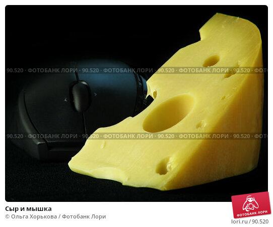 Сыр и мышка, фото № 90520, снято 14 сентября 2007 г. (c) Ольга Хорькова / Фотобанк Лори