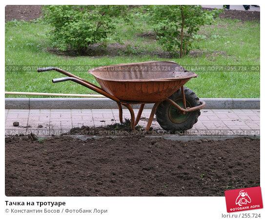 Тачка на тротуаре, фото № 255724, снято 29 мая 2017 г. (c) Константин Босов / Фотобанк Лори