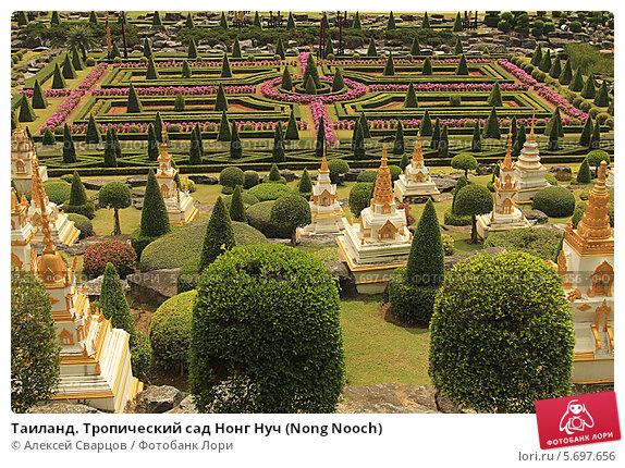 Таиланд. Тропический сад Нонг Нуч (Nong Nooch) (2014 год). Стоковое фото, фотограф Алексей Сварцов / Фотобанк Лори