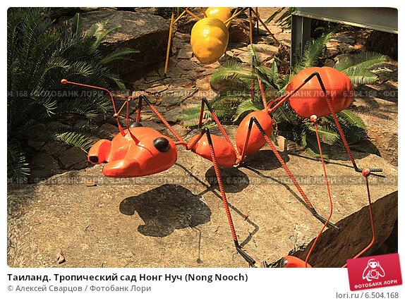 Купить «Таиланд. Тропический сад Нонг Нуч (Nong Nooch)», фото № 6504168, снято 22 февраля 2014 г. (c) Алексей Сварцов / Фотобанк Лори