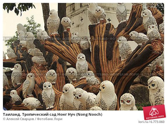 Купить «Таиланд. Тропический сад Нонг Нуч (Nong Nooch)», фото № 6773060, снято 22 февраля 2014 г. (c) Алексей Сварцов / Фотобанк Лори