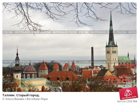 Таллин. Старый город., эксклюзивное фото № 210764, снято 25 февраля 2008 г. (c) Ольга Визави / Фотобанк Лори