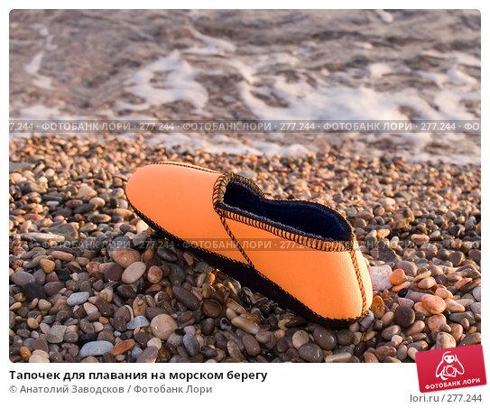 Тапочек для плавания на морском берегу, фото № 277244, снято 23 сентября 2006 г. (c) Анатолий Заводсков / Фотобанк Лори