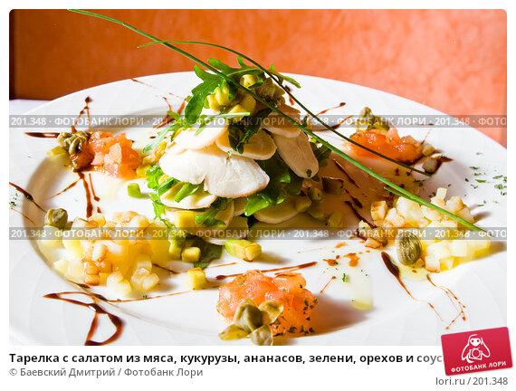 Тарелка с салатом из мяса, кукурузы, ананасов, зелени, орехов и соуса, фото № 201348, снято 12 февраля 2008 г. (c) Баевский Дмитрий / Фотобанк Лори