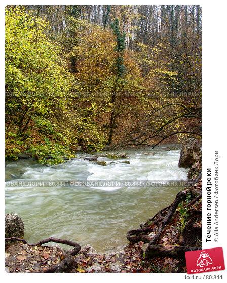 Течение горной реки, фото № 80844, снято 4 ноября 2006 г. (c) Alla Andersen / Фотобанк Лори