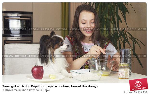 Купить «Teen girl with dog Papillon prepare cookies, knead the dough», фото № 29918516, снято 17 февраля 2019 г. (c) Юлия Машкова / Фотобанк Лори