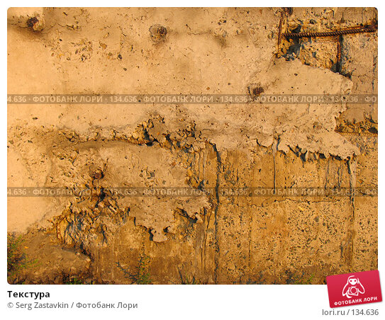 Текстура, фото № 134636, снято 12 июня 2004 г. (c) Serg Zastavkin / Фотобанк Лори
