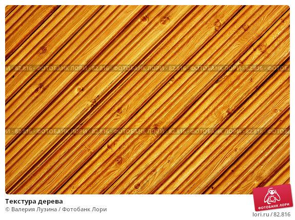 Купить «Текстура дерева», фото № 82816, снято 29 августа 2007 г. (c) Валерия Потапова / Фотобанк Лори