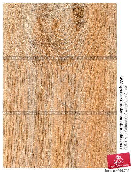 Купить «Текстура дерева. Французский  дуб.», фото № 264700, снято 24 ноября 2017 г. (c) Даниил Кириллов / Фотобанк Лори