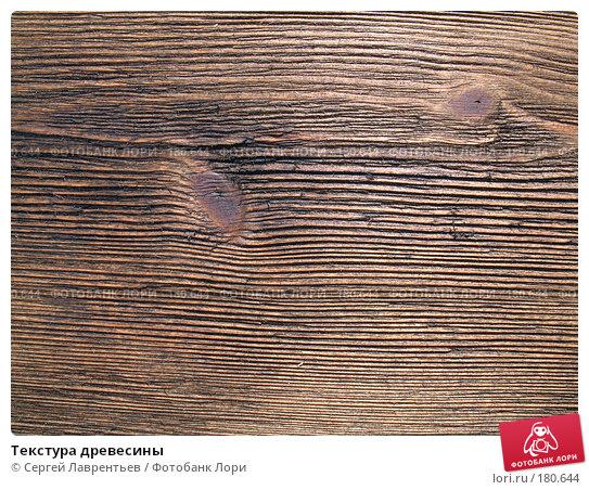 Текстура древесины, фото № 180644, снято 28 августа 2006 г. (c) Сергей Лаврентьев / Фотобанк Лори