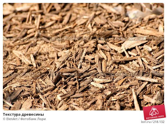Текстура древесины, фото № 218132, снято 5 декабря 2016 г. (c) ElenArt / Фотобанк Лори