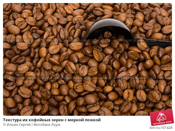 Текстура их кофейных зерен с мерной ложкой, фото № 67624, снято 16 апреля 2007 г. (c) Ильин Сергей / Фотобанк Лори
