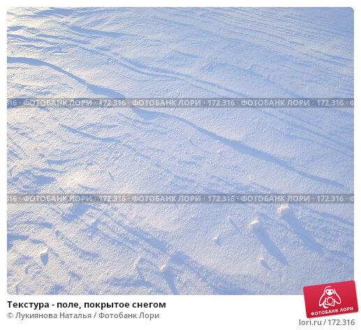 Текстура - поле, покрытое снегом, фото № 172316, снято 23 декабря 2007 г. (c) Лукиянова Наталья / Фотобанк Лори