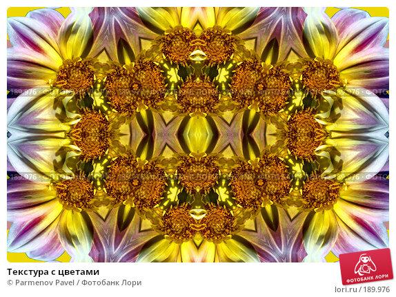 Купить «Текстура с цветами», фото № 189976, снято 21 декабря 2007 г. (c) Parmenov Pavel / Фотобанк Лори