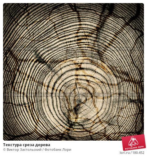 Текстура среза дерева, фото № 180452, снято 29 апреля 2017 г. (c) Виктор Застольский / Фотобанк Лори