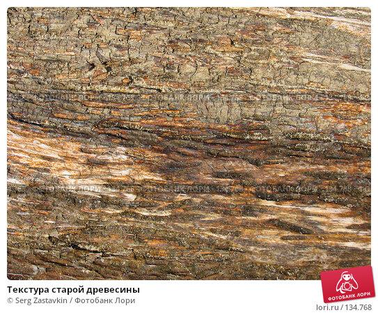 Текстура старой древесины, фото № 134768, снято 2 октября 2005 г. (c) Serg Zastavkin / Фотобанк Лори