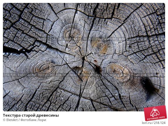 Купить «Текстура старой древесины», фото № 218124, снято 20 апреля 2018 г. (c) ElenArt / Фотобанк Лори