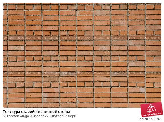 Текстура старой кирпичной стены, фото № 245268, снято 30 марта 2008 г. (c) Арестов Андрей Павлович / Фотобанк Лори
