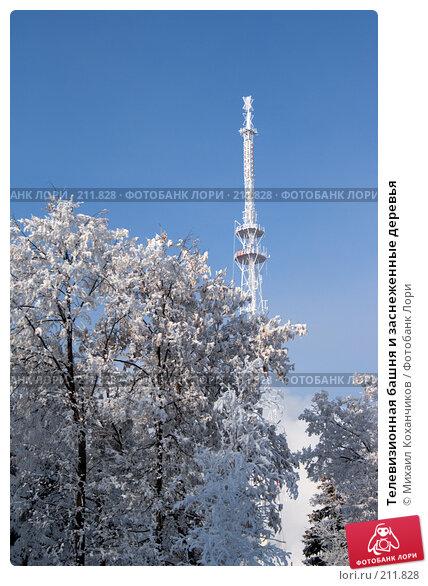 Телевизионная башня и заснеженные деревья, фото № 211828, снято 12 декабря 2007 г. (c) Михаил Коханчиков / Фотобанк Лори