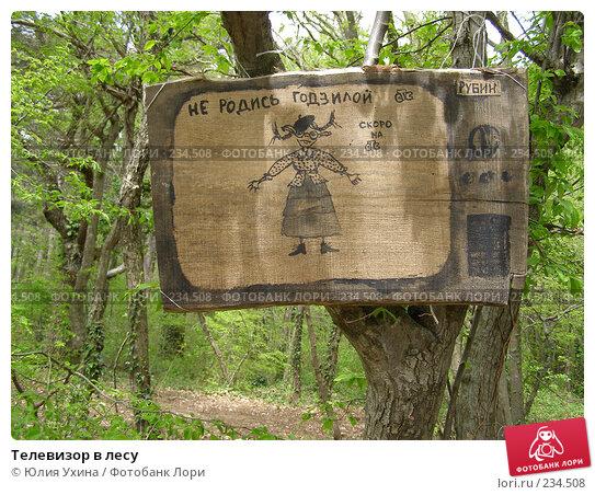 Телевизор в лесу, фото № 234508, снято 5 апреля 2005 г. (c) Юлия Ухина / Фотобанк Лори