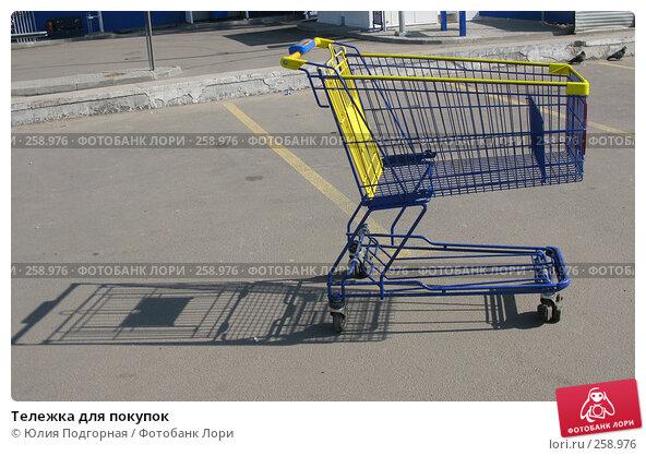 Тележка для покупок, фото № 258976, снято 21 апреля 2008 г. (c) Юлия Селезнева / Фотобанк Лори