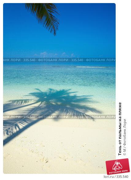 Тень от пальмы на пляже, фото № 335540, снято 30 марта 2017 г. (c) Михаил / Фотобанк Лори