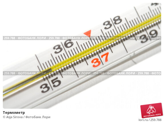 Купить «Термометр», фото № 259788, снято 19 апреля 2008 г. (c) Asja Sirova / Фотобанк Лори