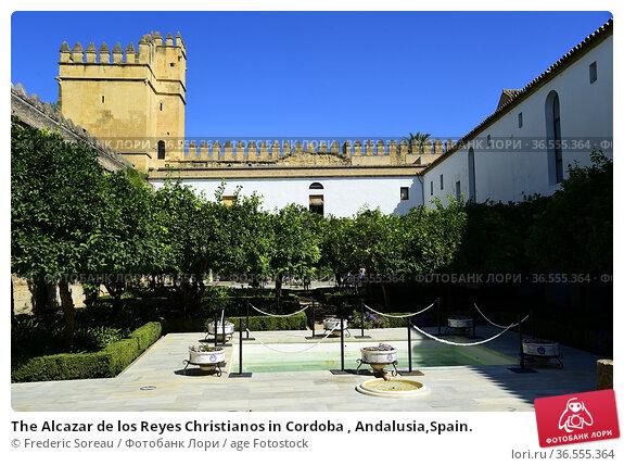 The Alcazar de los Reyes Christianos in Cordoba , Andalusia,Spain. Стоковое фото, фотограф Frederic Soreau / age Fotostock / Фотобанк Лори