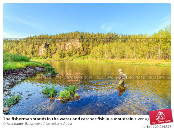 Купить «The fisherman stands in the water and catches fish in a mountain river against the background of a rock covered with forest», фото № 29214576, снято 8 сентября 2017 г. (c) Акиньшин Владимир / Фотобанк Лори