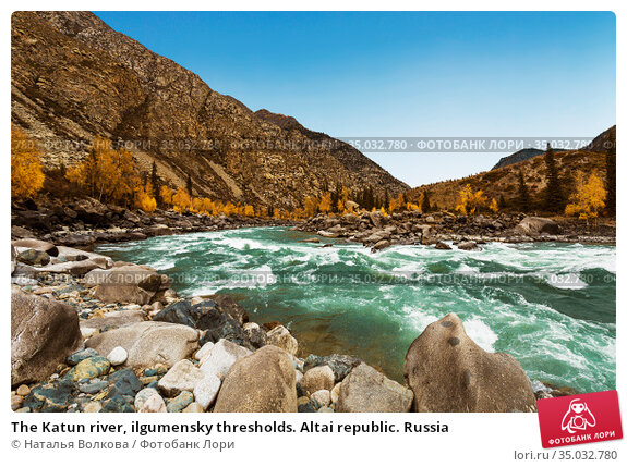 The Katun river, ilgumensky thresholds. Altai republic. Russia. Стоковое фото, фотограф Наталья Волкова / Фотобанк Лори