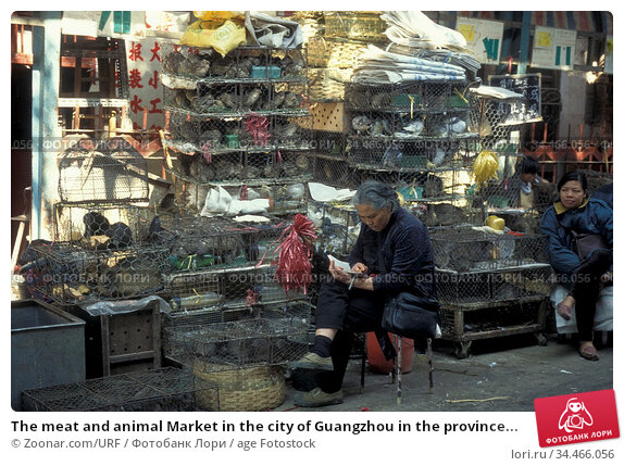 The meat and animal Market in the city of Guangzhou in the province... Стоковое фото, фотограф Zoonar.com/URF / age Fotostock / Фотобанк Лори