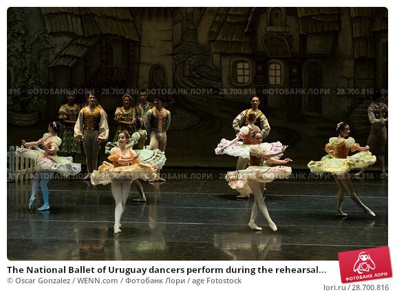 Купить «The National Ballet of Uruguay dancers perform during the rehearsal of 'Coppelia' at El Canal Theatre in Madrid Featuring: Atmosphere Where: Madrid, Spain...», фото № 28700816, снято 27 декабря 2016 г. (c) age Fotostock / Фотобанк Лори