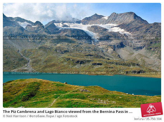 The Piz Cambrena and Lago Bianco viewed from the Bernina Pass in ... Стоковое фото, фотограф Neil Harrison / age Fotostock / Фотобанк Лори