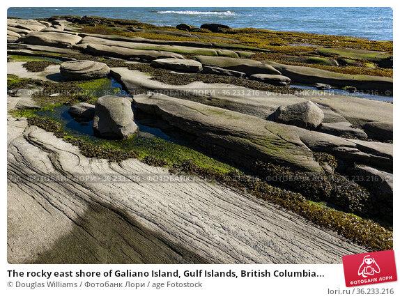 The rocky east shore of Galiano Island, Gulf Islands, British Columbia... Стоковое фото, фотограф Douglas Williams / age Fotostock / Фотобанк Лори