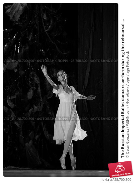 Купить «The Russian Imperial Ballet dancers perform during the rehearsal of 'El Cascanueces' at Lope de Vega Theatre in Madrid, Spain. Where: Madrid, Community...», фото № 28700300, снято 27 декабря 2016 г. (c) age Fotostock / Фотобанк Лори