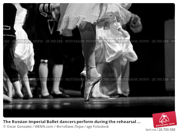 Купить «The Russian Imperial Ballet dancers perform during the rehearsal of 'El Cascanueces' at Lope de Vega Theatre in Madrid, Spain. Where: Madrid, Community...», фото № 28700588, снято 27 декабря 2016 г. (c) age Fotostock / Фотобанк Лори