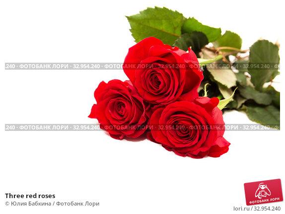 Three red roses. Стоковое фото, фотограф Юлия Бабкина / Фотобанк Лори