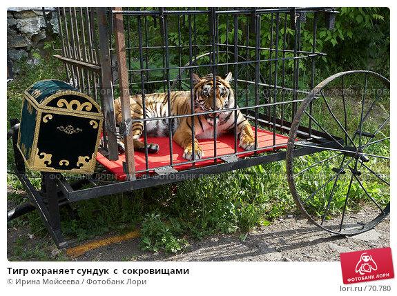 Тигр охраняет сундук  с  сокровищами, эксклюзивное фото № 70780, снято 10 июня 2007 г. (c) Ирина Мойсеева / Фотобанк Лори