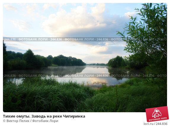 Тихие омуты. Заводь на реке Чигиринка, фото № 244836, снято 27 июня 2017 г. (c) Виктор Пелих / Фотобанк Лори