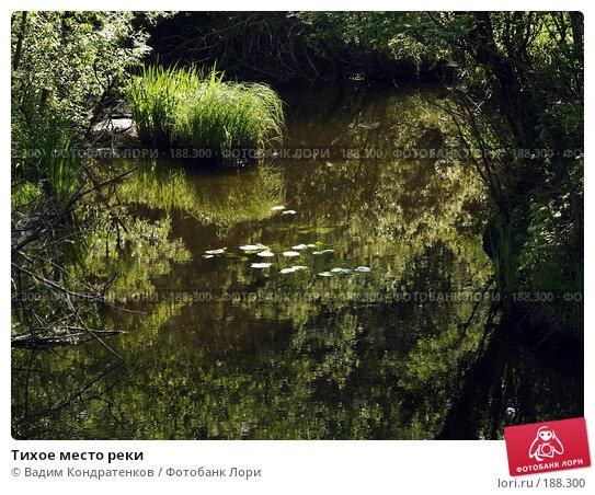 Тихое место реки, фото № 188300, снято 21 января 2017 г. (c) Вадим Кондратенков / Фотобанк Лори