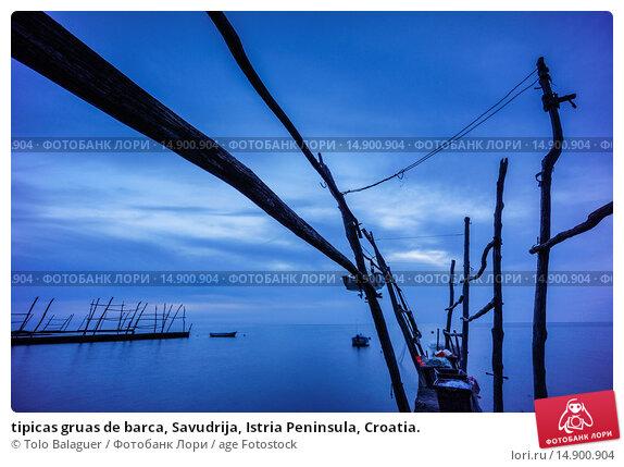 Купить «tipicas gruas de barca, Savudrija, Istria Peninsula, Croatia.», фото № 14900904, снято 19 июня 2018 г. (c) age Fotostock / Фотобанк Лори
