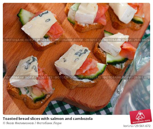 Купить «Toasted bread slices with salmon and cambozola», фото № 29561672, снято 22 марта 2019 г. (c) Яков Филимонов / Фотобанк Лори