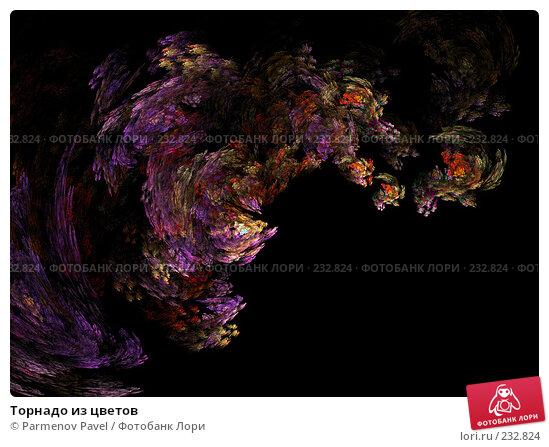 Купить «Торнадо из цветов», иллюстрация № 232824 (c) Parmenov Pavel / Фотобанк Лори