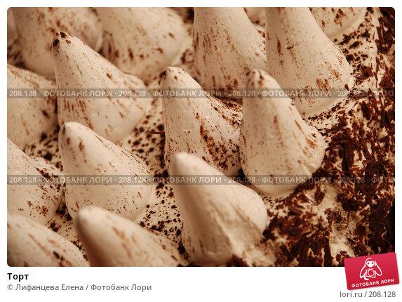 Торт, фото № 208128, снято 22 февраля 2008 г. (c) Лифанцева Елена / Фотобанк Лори