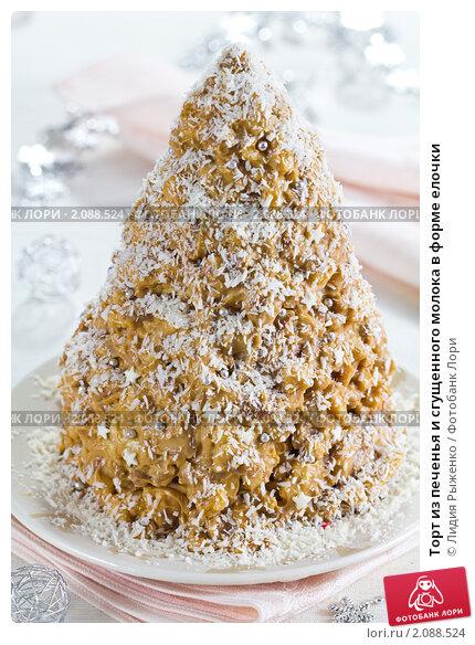 Купить «Торт из печенья и сгущенного молока в форме елочки», эксклюзивное фото № 2088524, снято 5 октября 2010 г. (c) Лидия Рыженко / Фотобанк Лори