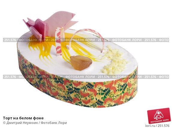 Купить «Торт на белом фоне», эксклюзивное фото № 251576, снято 21 апреля 2006 г. (c) Дмитрий Неумоин / Фотобанк Лори