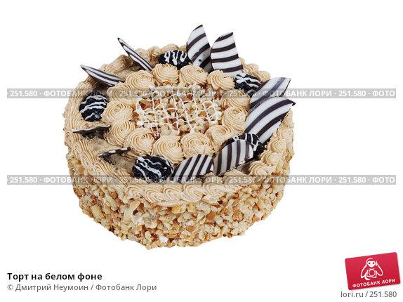 Торт на белом фоне, эксклюзивное фото № 251580, снято 24 декабря 2007 г. (c) Дмитрий Неумоин / Фотобанк Лори