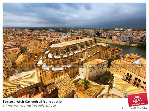 Купить «Tortosa with Cathedral from castle», фото № 28917944, снято 12 августа 2014 г. (c) Яков Филимонов / Фотобанк Лори